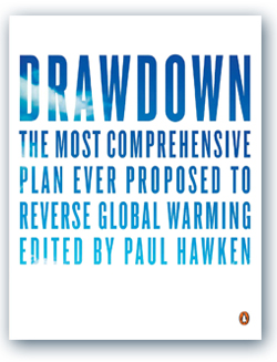 """DrawDown"" - GreenMoneyJournal.com"